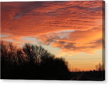 Orange Tracks Canvas Print by Cary Amos