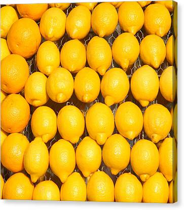 Oranges And Lemons Canvas Print by Art Block Collections