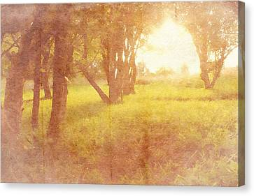 Orchard View Canvas Print by Brett Pfister