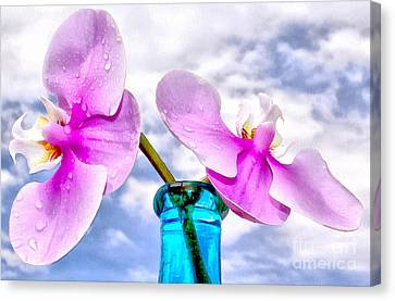 Orchid Glory Canvas Print by Krissy Katsimbras