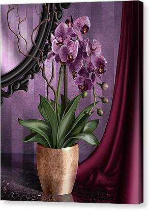 Orchid I Canvas Print by April Moen