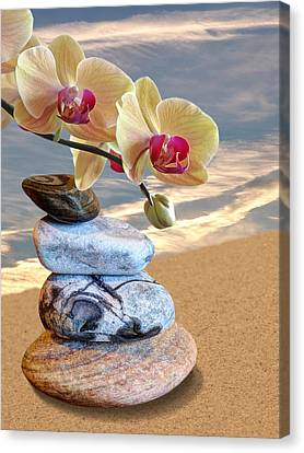 Orchids And Pebbles On Sand Canvas Print by Gill Billington