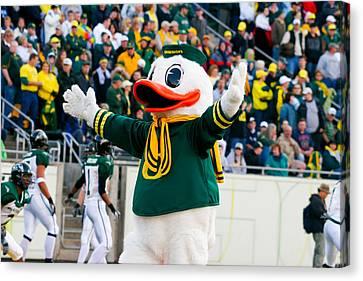 Oregon Ducks Mascot Puddles At Autzen Stadium Canvas Print by Joshua Rainey