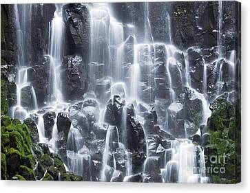 Oregon Ramona Falls Canvas Print by King Wu