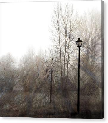 Oregon Winter Canvas Print by Carol Leigh