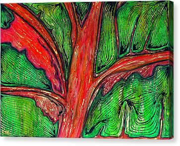 Organic Canvas Print by Carla Sa Fernandes