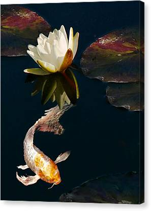 Oriental Koi Fish And Water Lily Flower Canvas Print by Jennie Marie Schell