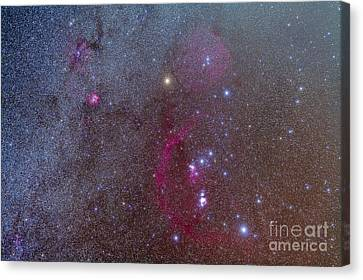 Orion And Monoceros Region Canvas Print by Alan Dyer