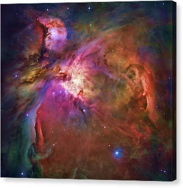 Orion Nebula Canvas Print by Dale Jackson