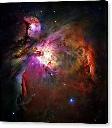 Orion Nebula Canvas Print by Ricky Barnard