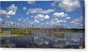 Orlando Wetlands Cloudscape 3 Canvas Print by Mike Reid