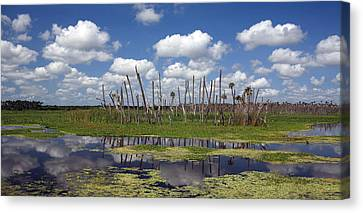 Orlando Wetlands Cloudscape Canvas Print by Mike Reid