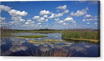 Orlando Wetlands Park Cloudscape 4 Canvas Print by Mike Reid