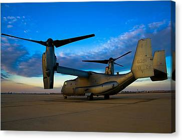 Osprey Sunrise Series 1 Of 4 Canvas Print by Ricky Barnard