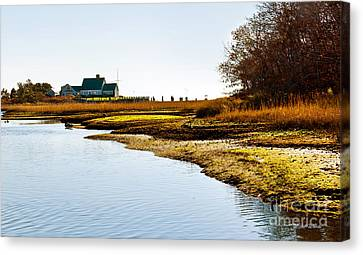 Out Back At Brax Landing Harwich Port Canvas Print by Michelle Wiarda