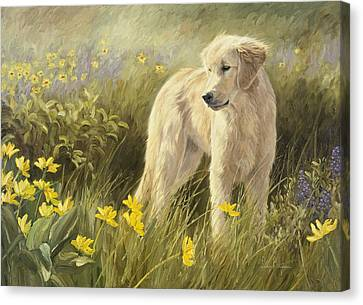 Out In The Field Canvas Print by Lucie Bilodeau