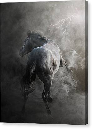Out Of The Fire Canvas Print by Pamela Hagedoorn