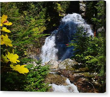 Out Of The Mt Waterfall  Canvas Print by Randy Giesbrecht