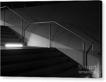 Out Of The Shadows Canvas Print by Wendy Wilton