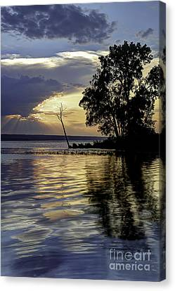 Out On Point Canvas Print by Michele Steffey