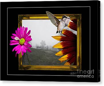 Outside The Box Canvas Print by Cris Hayes