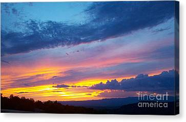 Outwest Canvas Print by Polly Anna