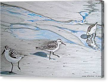 Overcast Day With Sanderlings Canvas Print by Linda Williams