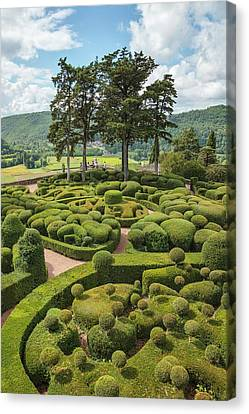 Overhanging Gardens Of Marqueyssac Canvas Print by Geoff Kidd