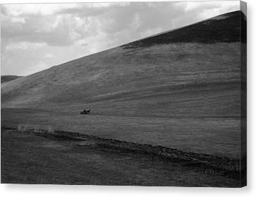 Overwhelmingly The Hill Canvas Print by Silvia Floarea Toth