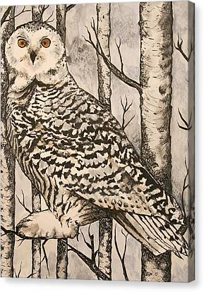 Owl Canvas Print by Monica Warhol