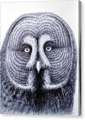 Owl Portrait Canvas Print by Rick Hansen
