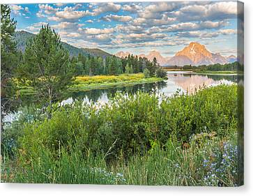 Oxbow Bend Summer Sunrise - Grand Teton National Park Canvas Print by Andres Leon