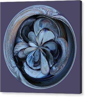 Oyster Shell Orb Canvas Print by Paulette Thomas
