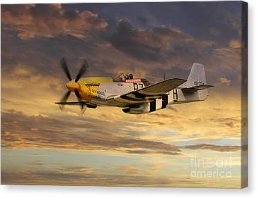 P-51 Ferocious Frankie Canvas Print by J Biggadike