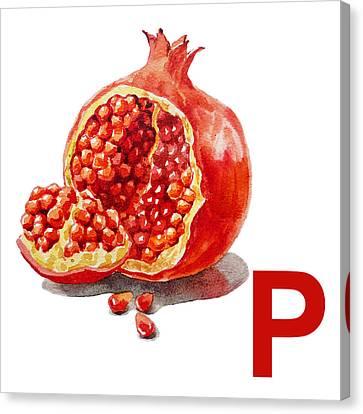 P Art Alphabet For Kids Room Canvas Print by Irina Sztukowski