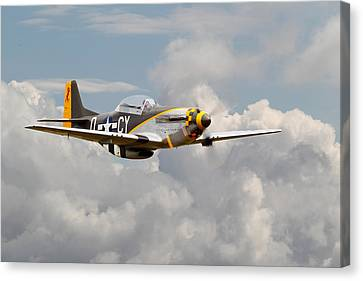 P51 Mustang - Miss Velma Canvas Print by Pat Speirs