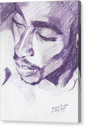Pac Canvas Print by Terri Meredith
