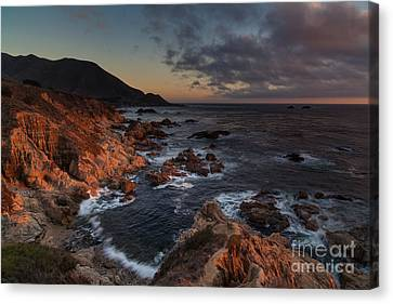 Pacific Coast Golden Light Canvas Print by Mike Reid