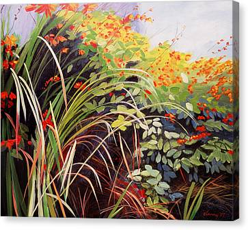Pacific Crocosmia Canvas Print by Melody Cleary