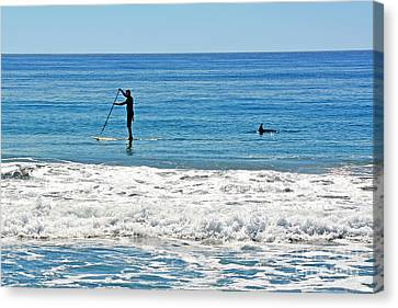 Paddle Boarder And Dolphin Canvas Print by Susan Wiedmann