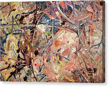 Paint Number 53 Canvas Print by James W Johnson