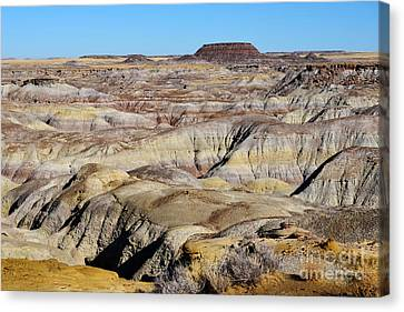 Painted Desert In Petrified Forest National Park Canvas Print by Shawn O'Brien