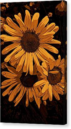 Painted Petals Canvas Print by Constance Carlsen
