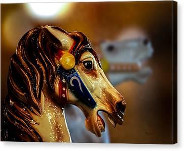 Painted Pony  Canvas Print by Bob Orsillo