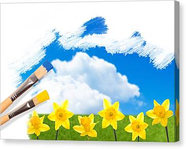 Painting Daffodils Canvas Print by Amanda And Christopher Elwell