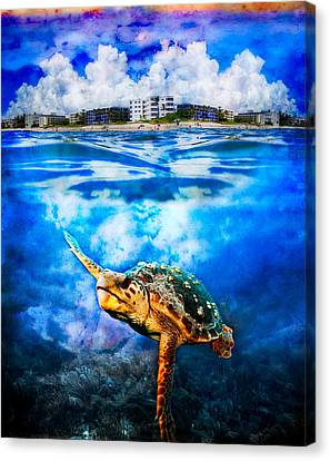 Palm Beach Under And Over Canvas Print by Debra and Dave Vanderlaan