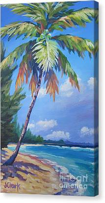Palm Tree And View East    Canvas Print by John Clark