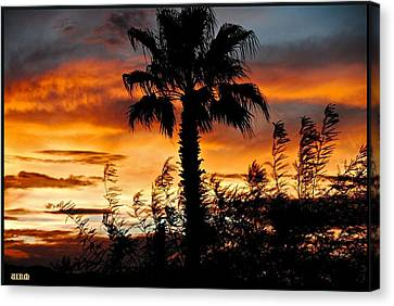 Palm Tree Paradise Canvas Print by Matthew Heller