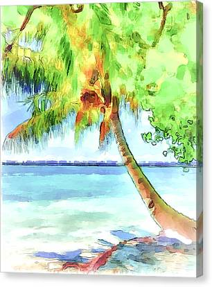 Palm Tree Canvas Print by Yury Malkov