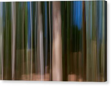 Panning Forest Canvas Print by Stelios Kleanthous